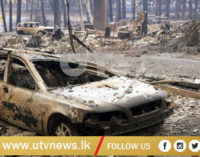 More victims found in California wildfires, Death toll rises to 31 with 200 missing