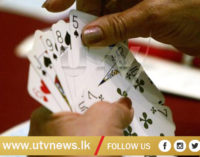 World number one bridge player handed one-year ban for doping