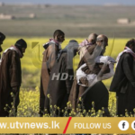 IS-militants-'caught-trying-to-escape'-last-Syria-enclave-UTV-News