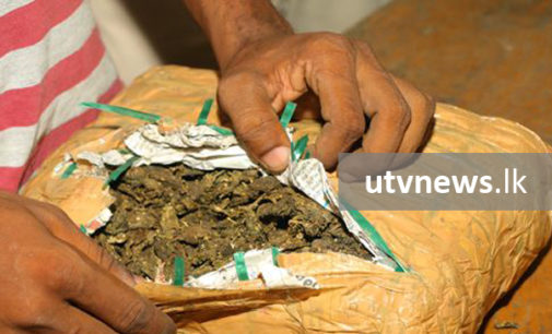 Navy nabs a person with 100g of Kerala cannabis