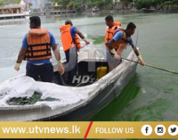 Navy Assists Cleaning Campaign of Beira Lake