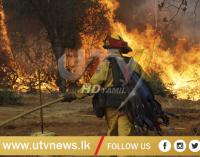 Deadly Northern California Blaze Slows Down