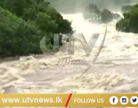 Kerala continues to reel under floods
